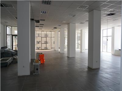 Spatiu de birouri Severinului-Casa Stiintei